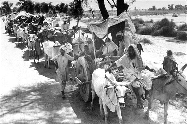 Partition_INdia 3